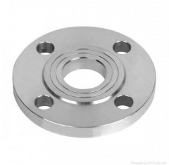 Stainless Steel bearing flange